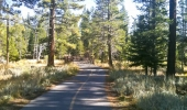 Tahoe Island Bike Trails
